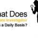 What happens during Fraud Investigations?