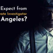 best private investigator los angeles